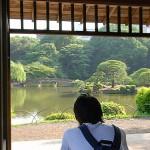 新宿、緑、東京の真ん中