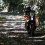 【どうにも】季節が変わります【止まらない】ROLEX TUDOR レンジャー デイデイト エクスプローラー KTM