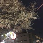 【エイプリルフール】春はいずこに。。【時計】