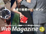 web_magazin